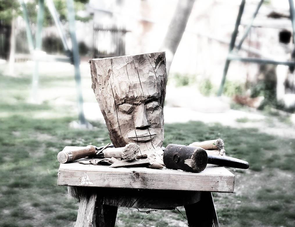 Teambuilding drevo Makuki